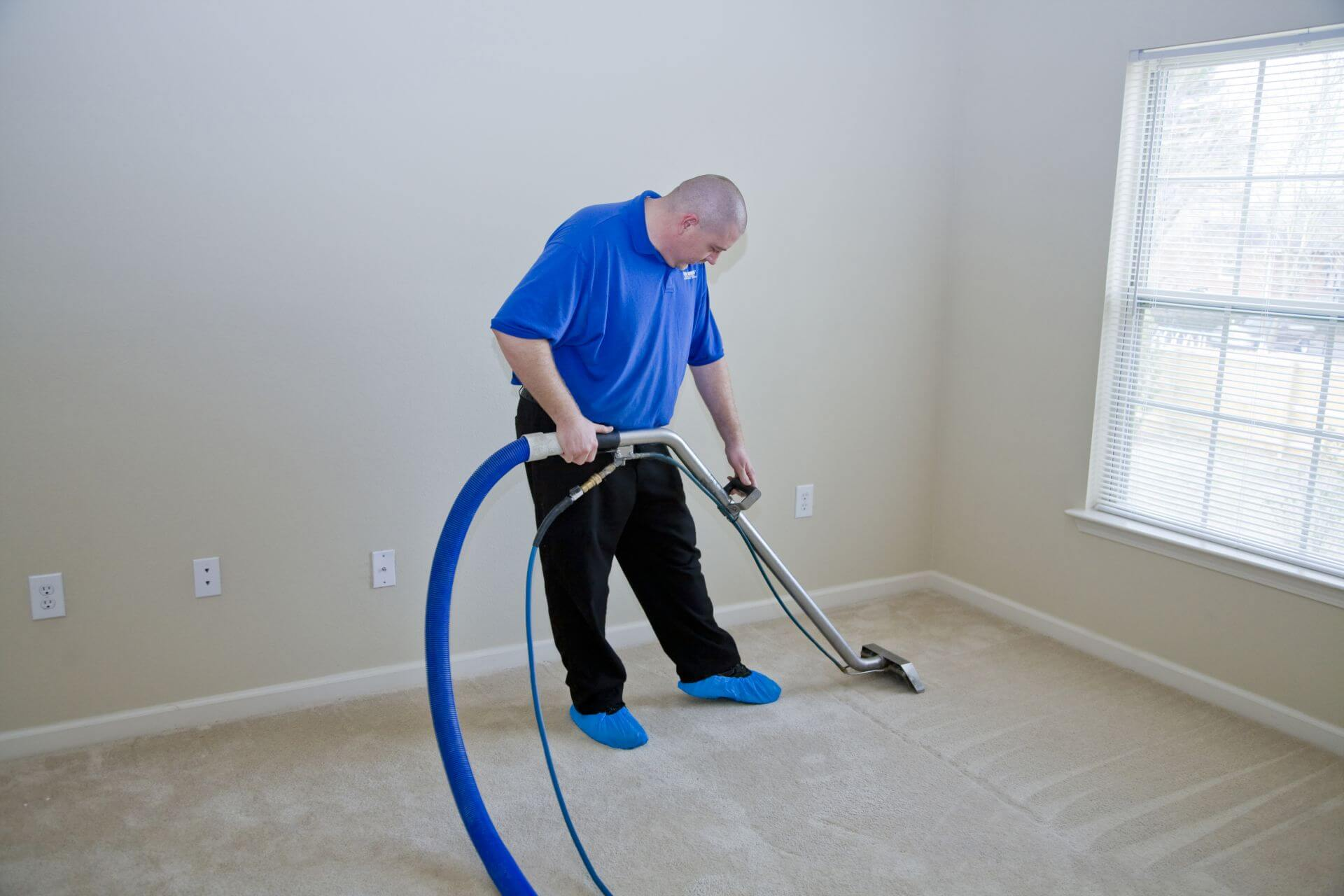Expert Advice For Finding A Carpet Cleaning Company To Meet Your Needs